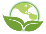 Online Value & CO2 Footprint Calculator