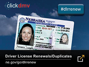 Get your driver license or duplicate online