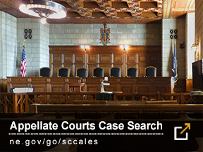 Appeallate Courts Case Search