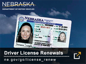 Driver License Renewals