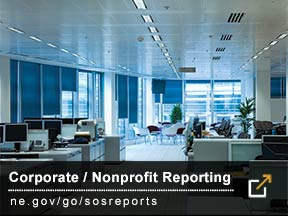 Corporate/Nonprofit Reporting