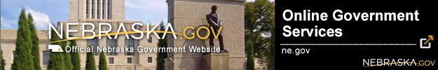 Online Government Services